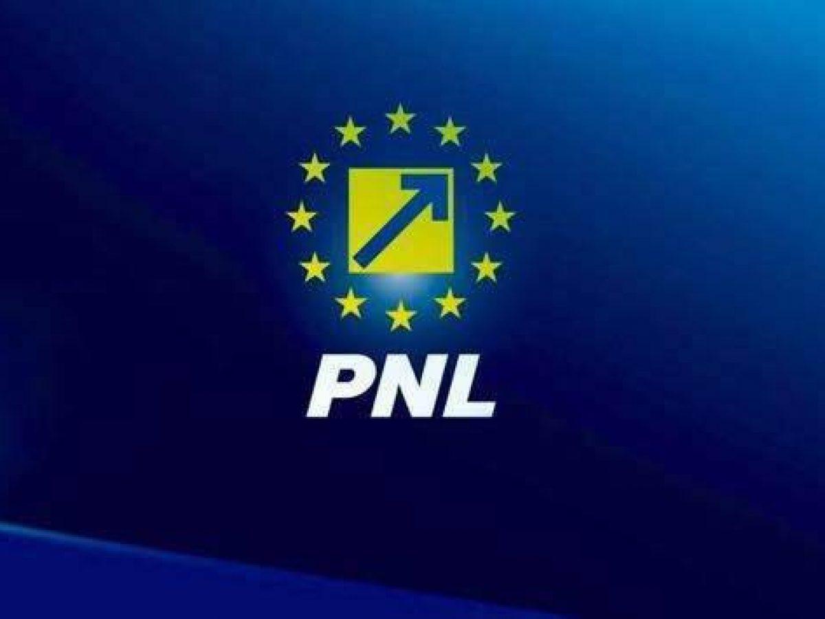 PNL Giurgiu şi-a desemnat candidaţii pentru alegerile generale