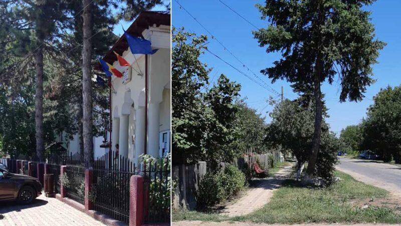 Oamenii primarului din comuna Toporu au furat bannerele contracandidatului său