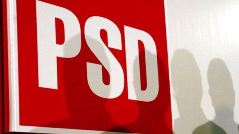 Liderii cu pedigree din PSD vor să scape partidul de foştii PD-işti Marian Mina şi Elena Dinu