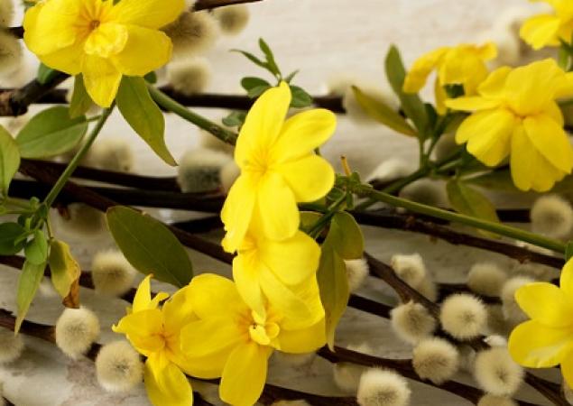 Sâmbăta lui Lazăr, tradiții și obiceiuri