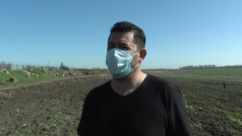 Ţaga Marian, primarul comunei Vedea alături de localnici a plantat 7.000 puieţi de salcâm