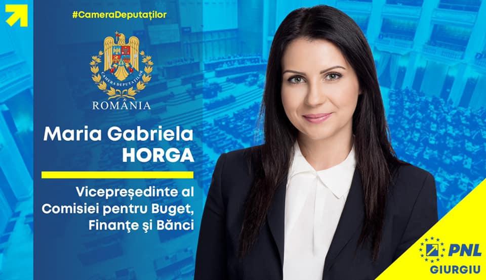 În viziunea deputatului Gabriela Horga încurajarea învățământului dual și dezvoltarea parcurilor industriale sunt împreună soluția integrată pentru a atrage investiții