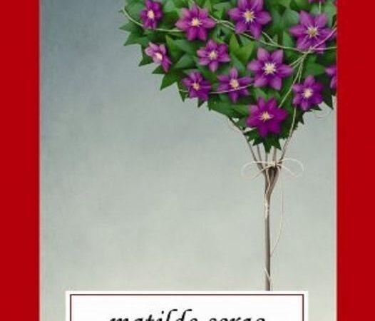 CARTEA ZILEI – Floarea pasiunii
