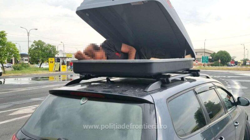 Sirian depistat ascuns în portbagajul suplimentar de pe plafonul unui autoturism